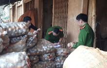 """Bắt quả tang cơ sở """"phù phép"""" 1.000kg khoai tây Trung Quốc nhái Đà Lạt"""
