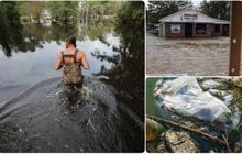 Bên trong làn nước lũ sau siêu bão Florence, người dân Đông Mỹ đang phải chịu đựng những mối nguy hiểm chết người