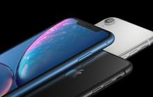 Apple kỳ vọng iPhone XR sẽ chiếm 50% tổng số lượng iPhone 2018 bán ra