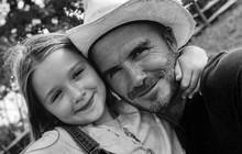 """Harper không còn là """"út cưng"""" vì vợ chồng Beckham đang chuẩn bị có em bé thứ 5?"""