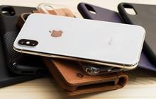 Một số ốp bảo vệ iPhone X sẽ không vừa với iPhone XS vì chênh lệch kích thước camera