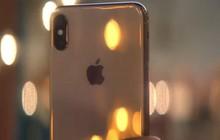 Khảo sát mới tiết lộ phản ứng của người Mỹ về iPhone 2018: Người thì thấy thú vị, kẻ lại cho là nhàm chán