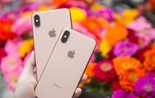 Bất ngờ chuyện bán iPhone mới: Giá càng đắt càng bán chạy, giá thấp hơn lìu tìu người mua