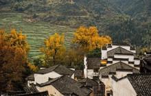 Những ngôi làng cổ cảnh sắc đẹp mê hồn nhất định phải ghé thăm vào mùa thu ở Trung Quốc