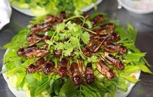 Ở vùng Long Khánh có một món đặc sản thử thách độ can đảm của nhiều người nhưng ai ăn xong cũng mắc ghiền