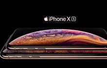 iPhone XS/XS Max bắt sóng yếu là do lỗi thiết kế anten?