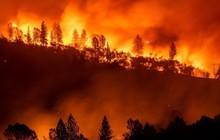 Cần ít nhất hai tuần để khống chế các đám cháy rừng ở California, Mỹ