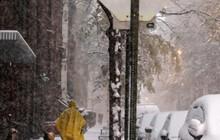 Ảnh: Mùa Đông băng giá đã tới ở nhiều nơi trên thế giới