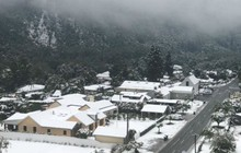 Tuyết rơi mùa hè ở New Zealand