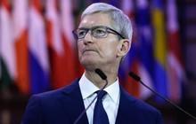 Vì sao Apple nhận hàng tỷ USD để sử dụng công cụ tìm kiếm mặc định của Google trên iOS rồi chỉ trích?