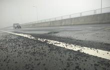 """Cao tốc Đà Nẵng - Quảng Ngãi lại """"mọc"""" loạt ổ gà sau mưa lớn"""
