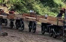 """Gia Lai: """"Lâm tặc"""" ngang nhiên vận chuyển gỗ lậu đi qua trạm quản lý rừng"""