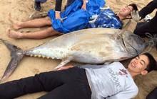 Không có dụng cụ, 2 học sinh cấp III ở Nhật tay không đấm ngất con cá ngừ nặng 1 tạ