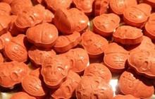Ma túy hình sọ người theo đường chuyển phát nhanh từ Ba Lan về Hà Nội