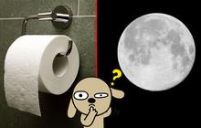 """Trào lưu selfie """"ngố tàu"""" nhất lịch sử Internet: Đua nhau dùng giấy vệ sinh để... biến thành mặt trăng"""
