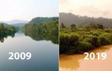 """Khi Trái đất cũng theo trend """"Thử thách 10 năm"""", cảm xúc chỉ còn 2 chữ: Xót xa"""