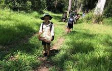 """Ngôi trường tiên phong cách giáo dục """"chẳng giống ai"""", đến cuối ngày chẳng đứa trẻ nào muốn về nhà"""