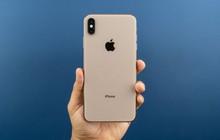 Đây là chiếc iPhone có tốc độ 4G nhanh nhất từ trước đến nay