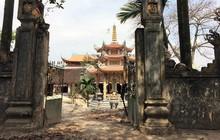 """Sau khi chặt hạ, cây sưa """"trăm tỷ"""" ở Hà Nội được bán giá bao nhiêu?"""