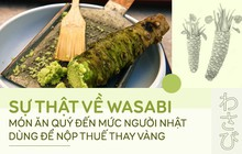 Sự thật đằng sau wasabi: thứ gia vị tưởng chừng như bình dị nhưng lại quý đến mức được người Nhật dùng để nộp thuế thay vàng