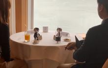 Nhật Bản ra mắt robot mai mối, các cặp đôi chỉ cần ngồi im để chúng nói chuyện thay họ