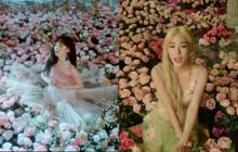MV mới của Tiffany Young khá giống sản phẩm cũ của Taeyeon, fan đoán ngụ ý đằng sau là gì?