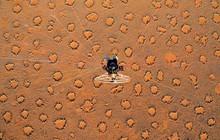 """Những """"vòng tròn thần tiên"""" đầy bí ẩn giữa sa mạc khiến khoa học đau đầu chuẩn bị có một lời giải mới"""