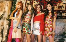 Hành trình của BLACKPINK ngày chưa debut: Các thành viên đã trải qua những gì trước khi trở thành girlgroup hàng đầu như hiện tại?