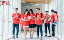 Tại sao ngành sáng tạo đang trở thành xu hướng của người trẻ Việt