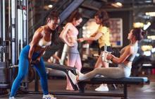 Swequity – Doanh thu của chúng tôi là những cuộc đời đã thay đổi, nhờ gym