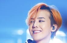 """Liệu G-Dragon có """"suất"""" debut nếu đi thi Produce 101 hay không, hãy nghe netizen trả lời!"""