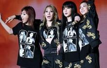"""Fan chưa kịp mừng vì tin đồn 2NE1 tái hợp thì Dara đã """"dập tắt"""" hy vọng thế này rồi!"""