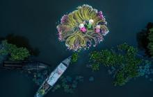 Góc hãnh diện: 3 ảnh chụp ở Việt Nam được vinh danh là 'Ảnh drone vui tươi nhất' và 'Ảnh drone thể thao đẹp nhất thế giới'