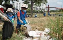 """Cho trẻ mầm non ở Sài Gòn đeo găng nilon tham gia """"thử thách dọn rác"""", nhà trường lên tiếng: Khu vực này không phải bãi rác!"""