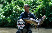 """Ngoài bắt cá sấu bằng tay không, phim tương tác """"You vs Wild"""" bị chê trẻ con vẫn còn 3 điều hút khán giả"""