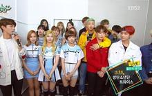 """""""Bố Park"""" và """"Bố Bang"""" có tâm tình gì mà để BTS và TWICE 5 lần 7 lượt """"chiến"""" nhau trên các BXH như vậy?"""