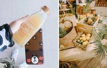 Dứa đang vào mùa: chọn ngay một vài loại đồ uống mix dứa ở Hà Nội để giải nhiệt luôn nào