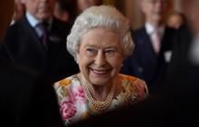 Nữ hoàng Anh Elizabeth II tuyển người quản lý các trang mạng xã hội
