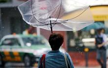 Mưa to, gió lớn, núi lửa phun trào gây trở ngại ở Nhật Bản