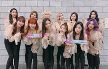 """Girlgroup vàng trong làng cover: Nhảy hùng hục """"FIRE"""" (BTS), thực hiện vũ đạo siêu nguy hiểm của NCT"""
