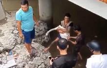 Hết gục giữa bãi rác, thiên nga ở Hải Phòng lại bị dính dây cước của người dân câu cá