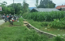 Hà Tĩnh: Phụ giúp thông gia thu hoạch lạc, một người đàn ông bị sét đánh tử vong