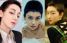Minh tinh Cbiz và thử thách tóc siêu ngắn: Địch Lệ Nhiệt Ba xuống sắc, Châu Đông Vũ khiến dân tình trầm trồ