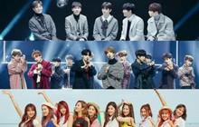 Tài sắc vẹn toàn nhưng cớ sao các nghệ sĩ của Pledis Entertainment lại có kết cục này?