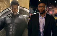 """""""Lụm tiền"""" ENDGAME chưa xong, Black Panther bị anh em Russo """"rủ rê"""" bỏ Wakanda đi làm cảnh sát!"""