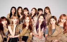 """Không như TWICE, thành tích của IZ*ONE ở Nhật giảm nhưng hơn Red Velvet vì fan """"đọ album không đọ view"""""""