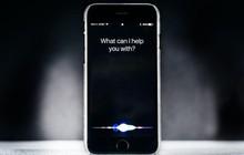 Xem iPhone tự động nhoay nhoáy 100% chỉ nhờ điều khiển giọng nói: Như lạc vào thế giới tương lai!
