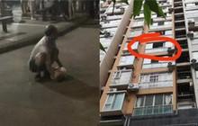 Bé trai rơi từ tầng 6 xuống đất tử vong tại chỗ, nguyên nhân cái chết đến từ bố ruột của em