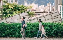 Có một Seoul lãng mạn và bình yên qua nước ảnh trong veo của nhiếp ảnh gia người Mỹ