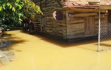 Lâm Đồng: Lũ kinh hoàng nhấn chìm nhiều nhà dân trong biển nước